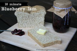 Ten Minute Georgia Blueberry Jam
